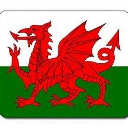 South Wales Technicians